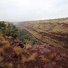 Dale's Gorge, Pilbara by gaylene