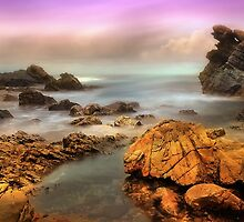 Ocean Forster 01 by kevin chippindall
