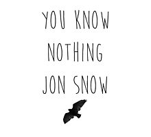You Know Nothing Photographic Print