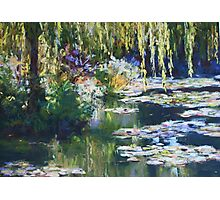 Willow & lilies, Giverny Photographic Print