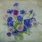 Bouquet of Cornflowers by Nicole  Markmann Nelson