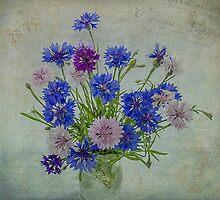 Bouquet of Cornflowers by Nicole  Markmann Nelson