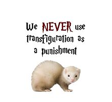 We NEVER Use Transfiguration As A Punishment Photographic Print
