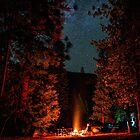 Camping Under Stars and Trees Night by Gavin Heffernan