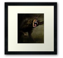 Dogs with game face on .42 Framed Print