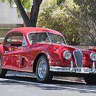Jaguar XK120 by Robert Jenner