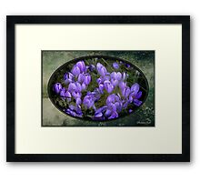 Faded Souvenir of a Long Ago Spring Framed Print