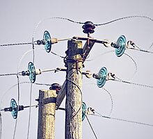 Power Point by lynn carter