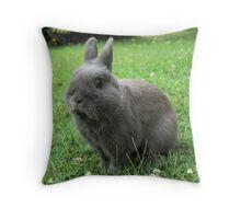 Billy the Rabbit Throw Pillow