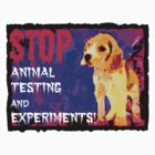 STOP cruel Animal testing and experiments!  by justice4mary