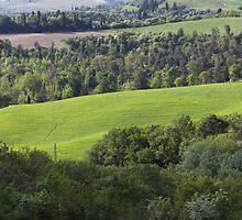 hilly landscape by spetenfia