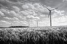 Wind Turbines by Jeremy Lavender Photography