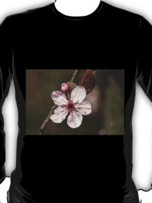 peach blossom in spring T-Shirt