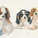 Cavalier King Charles Spaniel Puppies by BarbBarcikKeith