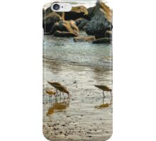 Sunset Sandpipers iPhone Case/Skin