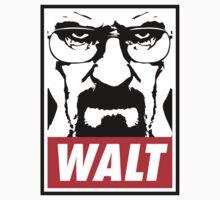 WALT by ivashka