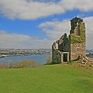 The Folly, Mount Edgcumbe by RedHillDigital