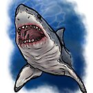 Shark Week by Brittney Lawrence