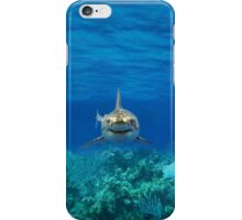 Shark ipad case iPhone Case/Skin