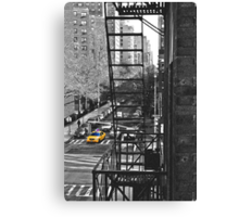 What's Black and White and Yellow all over? Canvas Print