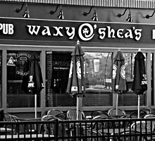 Waxys in Black and White by PicsbyJody