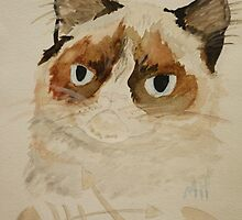 Grumpy Cat by Maura Hartzman