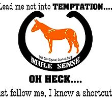 Lead me not into temptation oh heck follow me I know shortcut by MuleSense