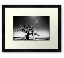 Dinner tree constellations Framed Print