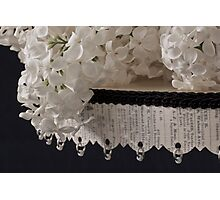 Lilac Blossom On Beaded Pedestal Photographic Print