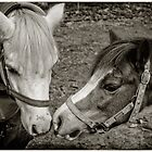 Two's Company by Paul Amyes