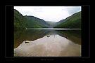 Glendalough - Lake2 by Roberta Angiolani