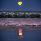 Broome Supermoon by Mieke Boynton