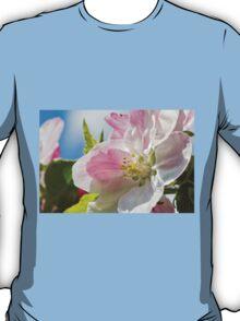 Beautiful Spring Apple Blossom T-Shirt