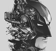Batman: The Dark Knight by rtcifra