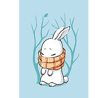 Winter Bunny Photographic Print