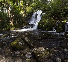 Forest Waterfall by sorstrommen