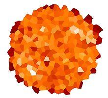 Crystallized Sun by coczero