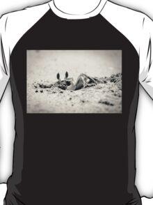 Crab on the beach T-Shirt
