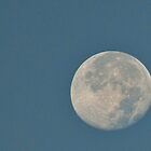 Good Morning Super Moon by barnsis