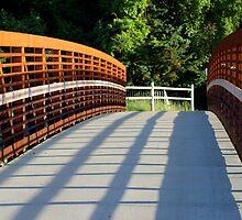 Sunken Meadow  Bridge by Gilda Axelrod