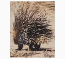 Porcupine and its Quills - African Wildlife Kids Clothes