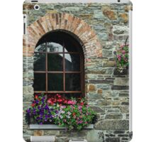 Window on the Great Famine iPad Case/Skin