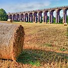 Straw Bales - Balcombe Viaduct - HDR by Colin J Williams Photography