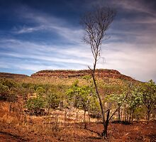 Northern Territory Landscape by Sandra Anderson