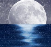 Moonlit Ocean Sticker