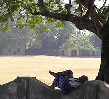 Well deserved evening rest, Kochi, Kerala, India by indiafrank