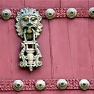 Door Knocker by phil decocco
