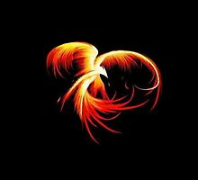 Flaming Phoenix Black Background by alxsdesigns