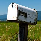 Country Mail by Rae Tucker