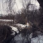 Winter Stream by KendraJKantor